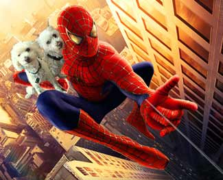 dogs-spiderman